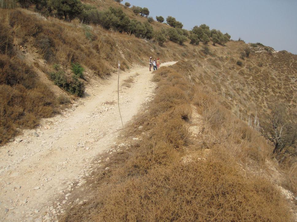 Wadi Dishon