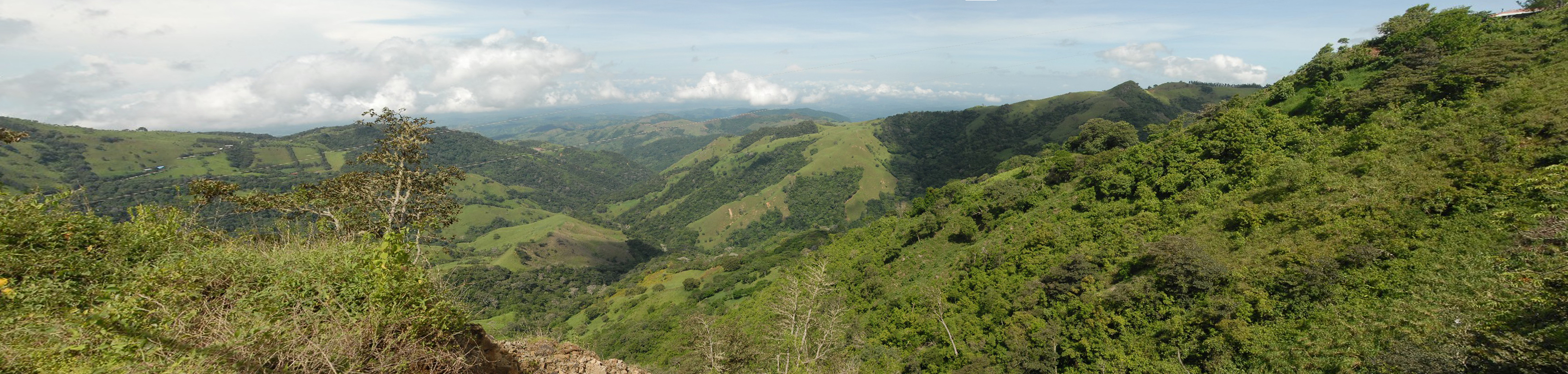 out-of-monteverde